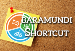 Beitragsbild baramundi Shortcut
